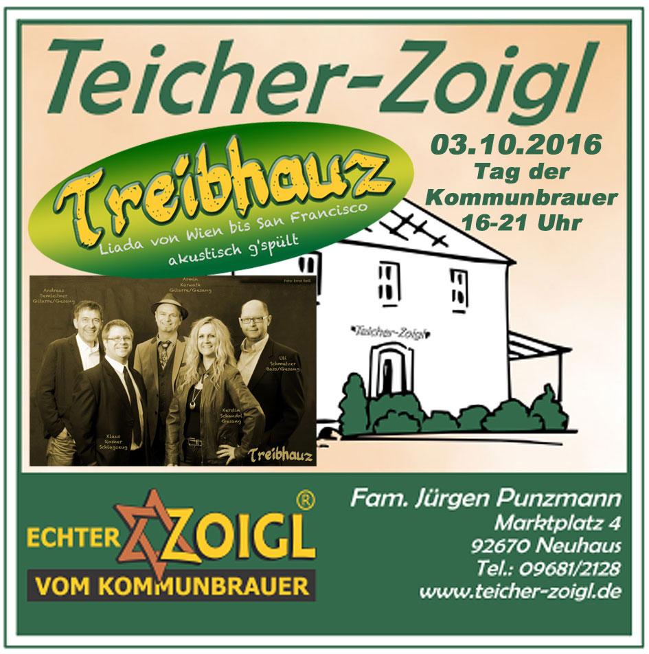 Teicher2016